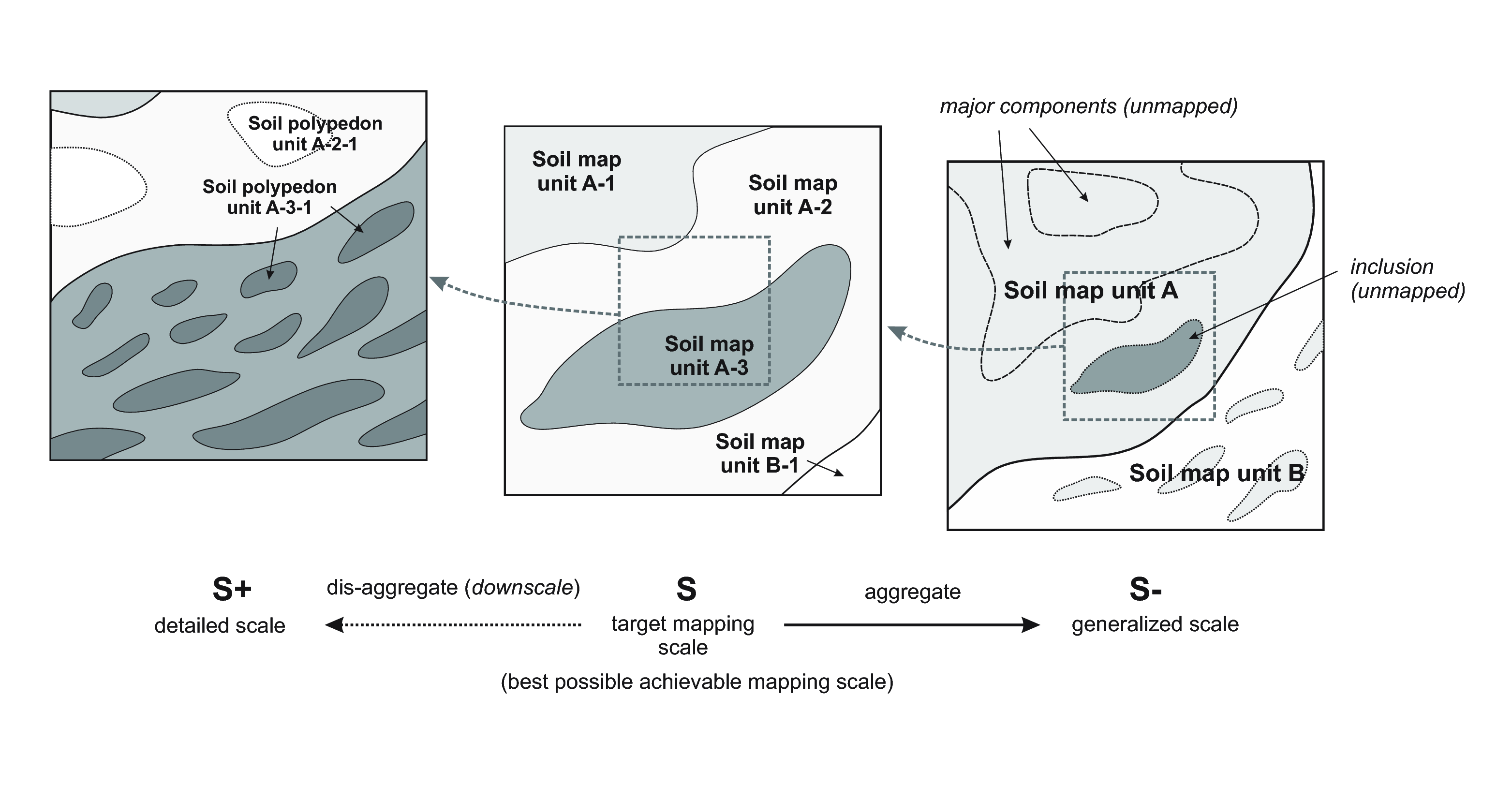 "Three basic conceptual scales in soil mapping: (left) most detailed scale showing the actual distribution of soil bodies, (center) target scale i.e. scale achievable by the soil survey budget, (right) generalized intermediate scale or coarse resolution maps. In a conventional soil survey, soils are described and conceptualized as groups of similar pedons (smallest elements of 1–10 square-m), called ""polypedons"" — the smallest mappable entity. These can then be further generalized to soil map units, which can be various combinations (systematic or random) of dominant and contrasting soils (inclusions)."
