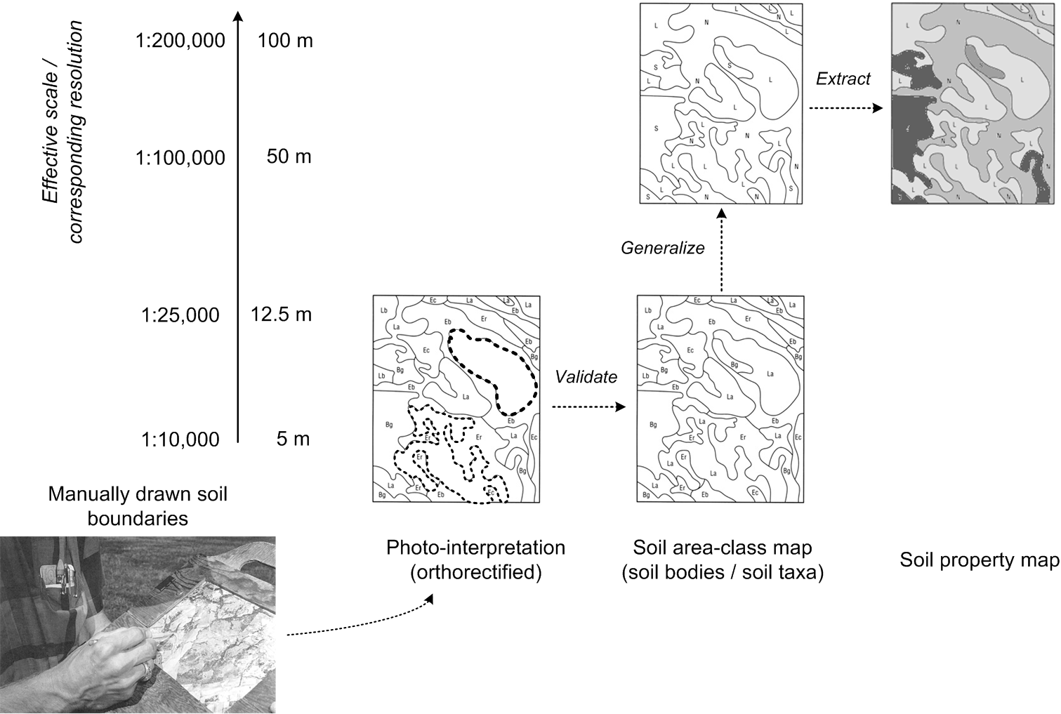 In conventional soil mapping, soil delineations are usually manually drawn polygons representing (assumed) bodies of homogenous soil materials (often geomorphological units). These are first validated in the field before a final area-class map is produced, which can then be generalized and used to extract soil property maps. After USDA Soil Survey Manual.