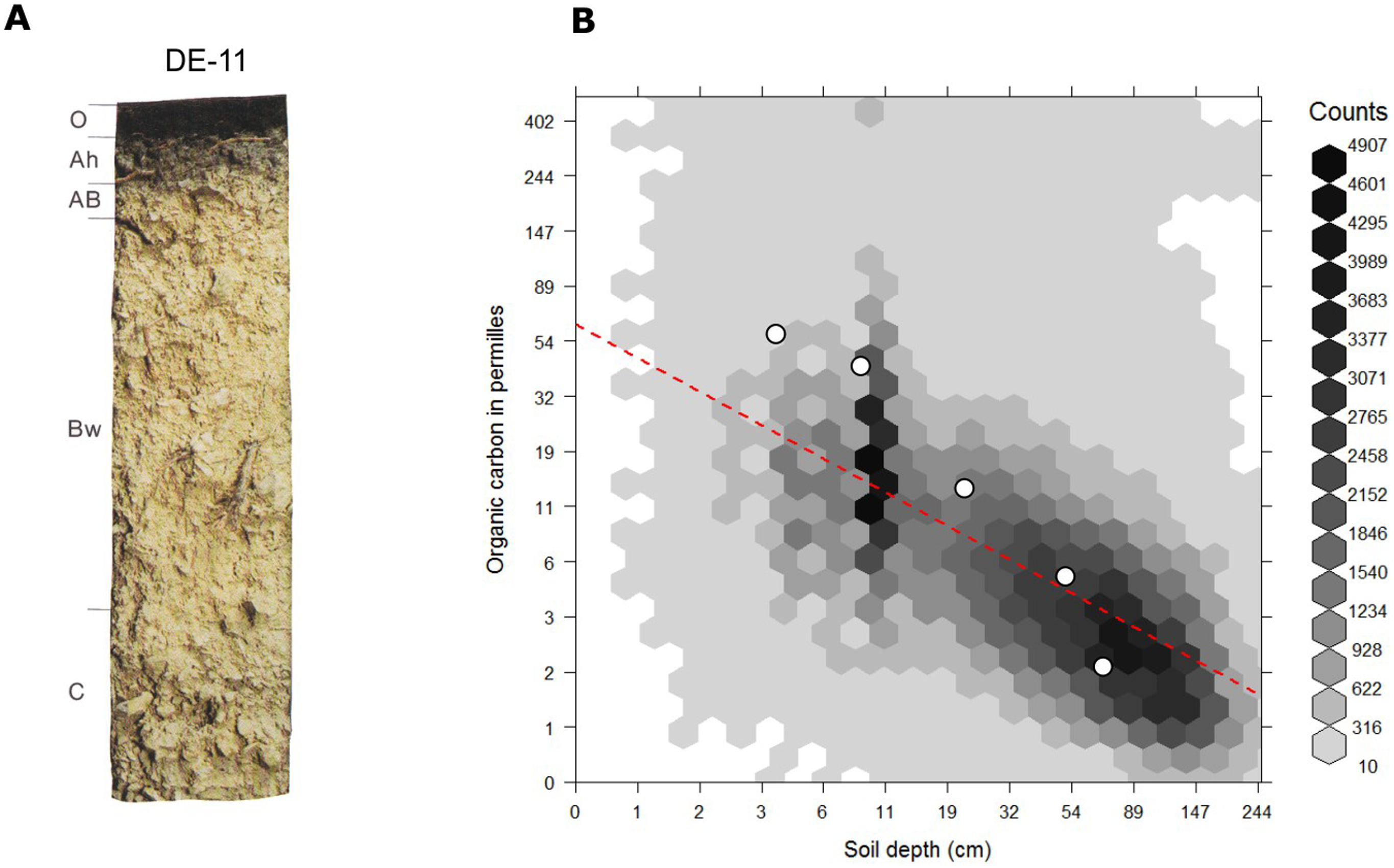 Globally fitted regression model for predicting soil organic carbon using depth only (log-log regression) and (a) individual soil profile from the ISRIC soil monolith collection. Image source: Hengl et al. (2014) doi: 10.1371/journal.pone.0105992.